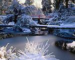 Seattle, WA<br /> Winter sun ulluminates snow covered trees and foot red foot bridge in Kubota Garden City Park