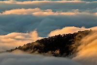 Sunrise and mountain mist, Blue Ridge Mountains from Blue Ridge Parkway near Brevard, North Carolina