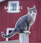 Barbara O'Brien Photography 2010 Barn Cat Wall Calendar