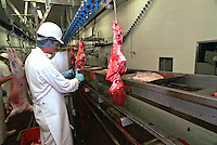 Government appointed meat hygiene service meat inspector at work in an abattoir. He is trimming the offal, from the carcase.