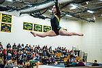 BC Gymnastics 2017