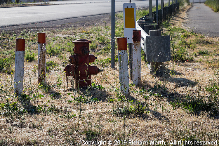Between the street and the path at MLK Regional Shoreline stands a fire hydrant, guarded by red and white posts.