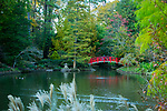 Visitors enjoy the duck pond and red bridge in Duke Gardens on a Fall afternoon.