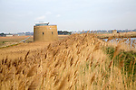 Martello tower in the marshes, Bawdsey, Suffolk, England