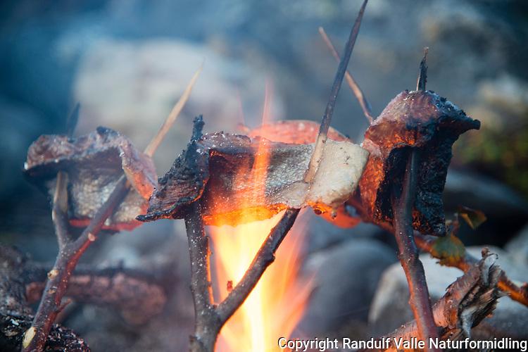 Grilling av laksefilet på bålet. ---- Cooking salmon filets on open fire.