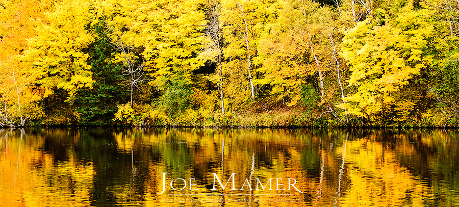 The St. Louis River flows past colorful autumn leaves in Jay Cooke State Park in northern Minnesota.