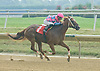 Gold On Gold winning at Delaware Park on 7/19/12
