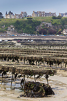 France, Ille-et-Vilaine (35), Cancale, les parcs à huître et la ville //France, Ille et Vilaine, Cancale, Oyster farm