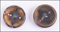 BNPS.co.uk (01202 558833)<br /> Pic: C&amp;TAuctions/BNPS<br /> <br /> WW2 Royal Air Force Button Compass.<br /> <br /> A lethal arsenal of secret weapons World War Two spies carried with them to nullify German soldiers has emerged over 70 years later.<br /> <br /> The chilling collection consists of seemingly everyday items which, on closer inspection, conceal a deadly James Bond-style tool secret agents could turn to in the event of being rumbled.<br /> <br /> One such object is an 'assassination lapel spike' - a decorative steel pin to be worn on the lapel of a jacket but when fully exposed is a slender 4ins long dagger with a razor-sharp barb.<br /> <br /> They are being sold at Kent auction hose C&amp;T.
