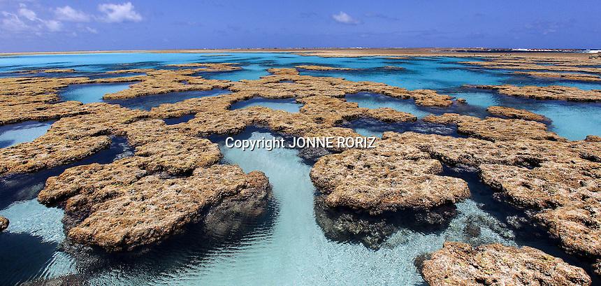 """ATOL DAS ROCAS  - 01/09/2012 - ESPECIAL - OE - CADERNO PLANETA - VIDA & -  Materia especial sobre o Atol das Rocas, um oasis """"flutuante"""" no meio do Oceano Atlantico.  O unico atol do Atlantico Sul e a primeira reserva biologica marinha do Brasil, localizada a 270 km (22 horas de barco) de Natal.  Uma reserva biologica extremamente fragil, aberto apenas para cientistas e pesquisadores. FOTO JONNE RORIZ/AE"""