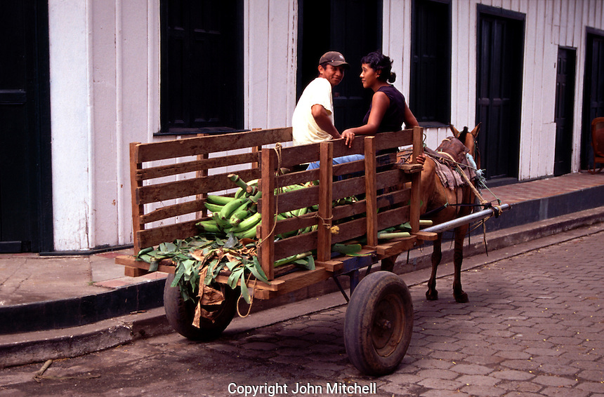 Man and women sitting on a horse drawn cart loaded with plantains, Moyogalpa, Nicaragua