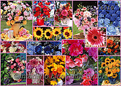 COLLAGEN, photos+++++,KL16510,#collagen#,flowers, EVERYDAY ,collages,puzzles