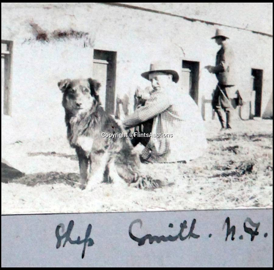 BNPS.co.uk (01202 558833)<br /> Pic: FlintsAuctions/BNPS<br /> <br /> Even in the wildwest the dogs were called Shep...<br /> <br /> Unseen album reveals the life of a cowboy in the real wild west...<br /> <br /> Fascinating previously unseen early photos of cowboys in the Wild West have come to light 130 years later.<br /> <br /> They show life on the ranches of Colorado and New Mexico in the vast expanses of the south west US in the 1880s.<br /> <br /> One dramatic image captures the thrilling moment a group of cowboys ride towards the camera with hats held aloft.<br /> <br /> The photos are thought to have been taken by a British farmhand who travelled Stateside in the late 19th century to earn a living.