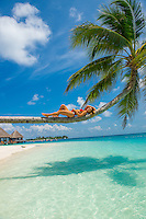 Maldives, Rangali Island. Conrad Hilton Resort. Woman in Palm tree over the ocean,.