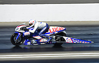 Nov. 10, 2012; Pomona, CA, USA: NHRA pro stock motorcycle rider Hector Arana Jr during qualifying for the Auto Club Finals at at Auto Club Raceway at Pomona. Mandatory Credit: Mark J. Rebilas-