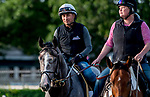June 7, 2019 : Tacitus enters the main track as horses prepare for the Belmont Stakes on Belmont Stakes Festival Weekend at Belmont Park in Elmont, New York. Scott Serio/Eclipse Sportswire/CSM