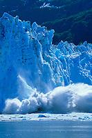 Tidewater face of Meares glacier calves into Prince William Sound, Alaska.