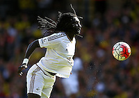 Bafetimbi Gomis of Swansea   during the Barclays Premier League match Watford and Swansea   played at Vicarage Road Stadium , Watford