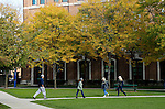 Students walk past a holly tree as fall colors blanket DePaul's Lincoln Park Campus Thursday, Oct. 25, 2013. (Photo by Jamie Moncrief)