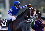 November 2, 2019: Mo Forza, ridden by Joel Rosario, wins the Qatar Twilight Derby (Grade II) on Breeders' Cup World Championship Saturday at Santa Anita Park on November 2, 2019: in                                                                                                                                                                                                                                                                                                                                                                                                                                                                                                                                                                                                                                                                                                                                          Arcadia, California. Carolyn Simancik/Eclipse Sportswire/CSM