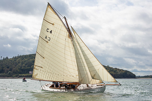 Jap (Cork Harbour One Design) C4 Clayton Love