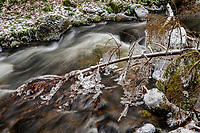 Iced branches overhanging Siamese Brook in the Adirondack Mountains Of New York State