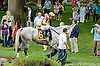 Awesome Maria before The Delaware Handicap (gr 2) at Delaware Park on 7/21/12