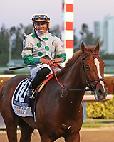 HALLANDALE BEACH, FL - MAR 3:  Scenes from the Fountain of Youth Stakes. Promises Fulfilled #10 with jockey Irad Ortiz Jr. waits to go to the winners circle after winning  the Fountain of Youth Stakes at Gulfstream Park on March 3, 2018 in Hallandale Beach, Florida. (Photo by Liz Lamont/Eclipse Sportswire/Getty Images)