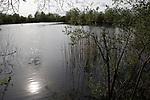 Bullfield lake -  next to Thrupp  lake.  Radley lakes