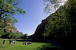Grass lawn at Zion Lodge, Zion Canyon, Zion National Park, UTAH