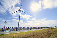 peloton crossing the Zeeland dikes<br /> <br /> 2nd World Ports Classic 2013<br /> stage 2: Rotterdam  (NLD) - Antwerpen (BEL)<br /> 191km