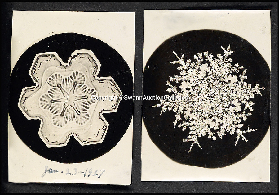"""BNPS.co.uk (01202 558833)<br /> Pic: SwannAuctionGalleries/BNPS<br /> <br /> <br /> First contact - Unique album that revealed the beauty and variety of snowflakes.<br /> <br /> This striking never-before-seen album captures the work of an obsessive photographer who proved all snowflakes are unique.<br /> <br /> Although initially shunned by scientists, Wilson """"Snowflake Man"""" Bentley's work bewitched the public after his pictures began to be published at the end of the nineteenth century. <br /> <br /> The eccentric snapper - who died after walking six miles home in a blizzard in 1931 - used a specially adapted bellows camera and microscope to capture the flakes after catching them on a blackboard. <br /> <br /> This extremely rare leatherette album of his work has emerged at auction - and as it spans the length of his career, some of the pictures could be the first ever images of snow flakes.<br /> <br /> The album is expected to fetch £21,000 on Thursday when it is sold by Swann Galleries in New York."""
