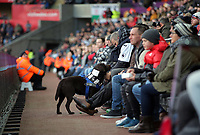 Swansea supporters during the Premier League match between Swansea City and Bournemouth at The Liberty Stadium, Swansea, Wales, UK. Saturday 25 November 2017