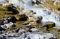Mammoth terrace in Yellowstone national Park, Wyoming, USA