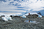 Guests of National Geographic Expeditions explore Mikkelsen Harbour, Antarctica