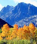 USA, California, Sierra Nevada Mountains. Autumn in the Sierras.