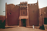 World Civilization:  African Adobe Architecture-house in Djenne, Mali.  Once owned jointly by man and woman; right-hand corner pinnacle phallic, not left.  Photo '91.