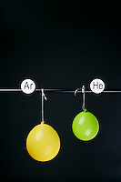 HELIUM AND ARGON FILLED BALLOONS<br /> (Variations Available)<br /> The Two Balloons Are Filled To The Same Volume<br /> After 7 hours the Helium filled balloon is smaller than the Argon filled balloon. Helium effuses out of the balloon faster than Argon.  Light atoms or molecules effuse through the pores of the balloons faster than heavy atoms or molecules.