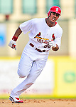 10 March 2010: St. Louis Cardinals' outfielder John Jay in action during a Spring Training game against the Washington Nationals at Roger Dean Stadium in Jupiter, Florida. The Cardinals defeated the Nationals 6-4 in Grapefruit League action. Mandatory Credit: Ed Wolfstein Photo