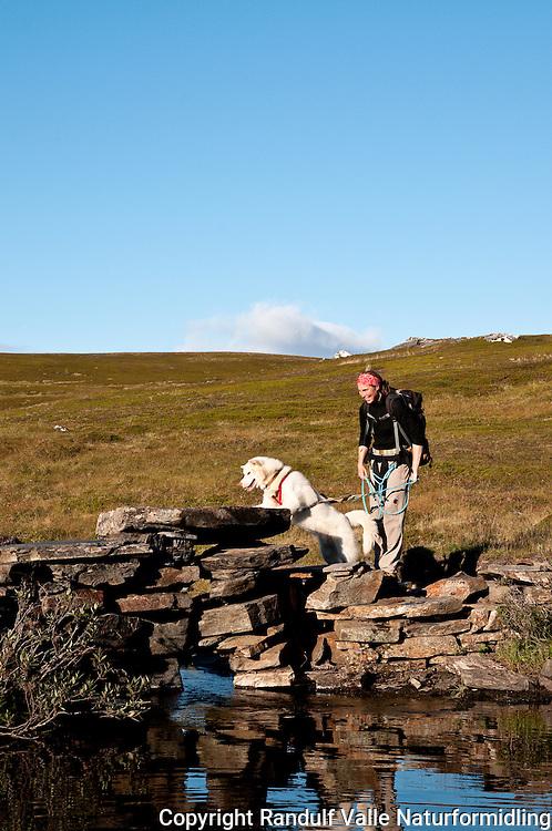 Dame og grønlandshund krysser steinbru. ---- Woman and dog crossing bridge.