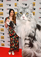 Lucy Pinder<br /> Cats Protection's National Cat Awards, held by the Cats Protection celebrating feline tales of courage, promote benefits of cat adoption. The Savoy Hotel, London, England on August 02, 2018.<br /> CAP/JOR<br /> &copy;JOR/Capital Pictures