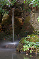In the lovely gardens at Tenju-an in Nanzen-ji Temple, a waterfall drops into a still pool.