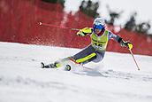 17th March 2018, Àvet Slope, Soldeu, Andorra; FIS Alpine Ski European Cup, Slalom Ladies Finals; #15 NOENS Nastasia fromFRA  during the Slalom Final
