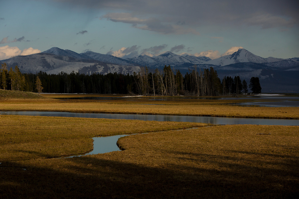 Pelican Creek is pictured in Yellowstone National Park, Wyoming on Monday, May 22, 2017. (Photo by James Brosher)