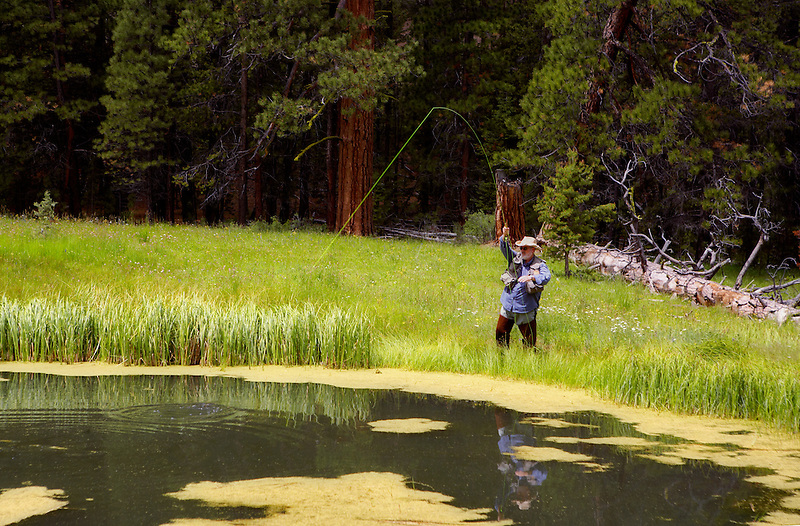 Fly fisherman playing redband trout on small pond in Freemont National Forest. Oregon