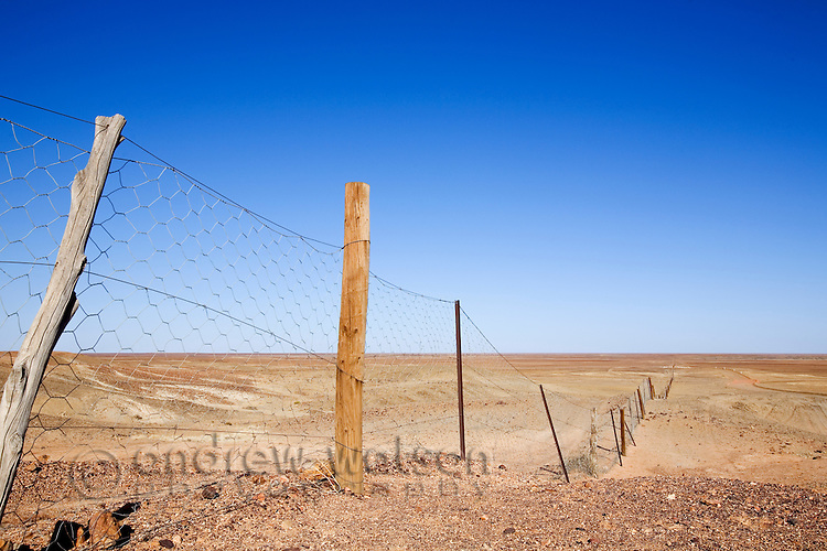 The Dog Fence - the longest continual fence in the world, stretching 5300km from Surfer's Paradise in Queensland to north of Ceduna in South Australia.  It was built to stop the Dingo (native Australian dog) crossing from the north into sheep country in the south.  Coober Pedy, South Australia, AUSTRALIA.