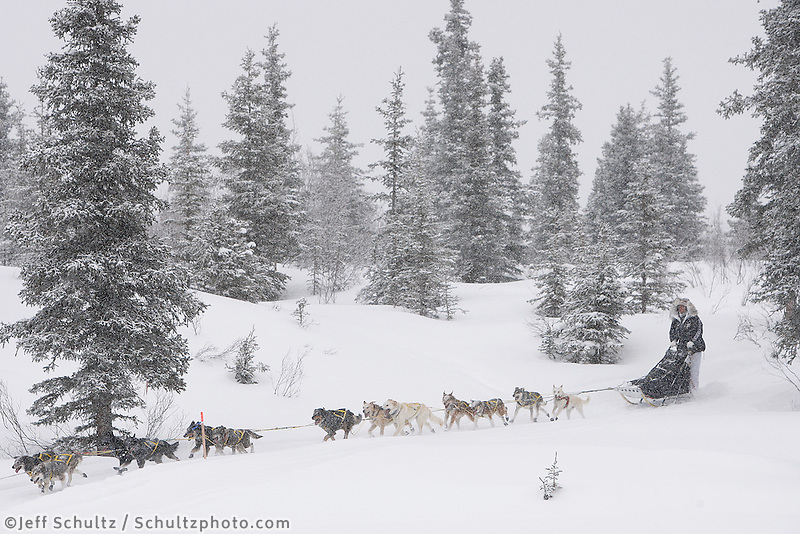 Monday  March 8 , 2010   Hans Gatt runs down the bank and onto Puntilla Lake 1/2 mile from the Rainy Pass checkpoint
