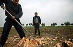 Adel Talib, 13, watches as his neighbor Muhammad Noor Mahmoud breaks the stump of an olive tree into chunks of wood for heating near Azaz Camp, just inside the Syrian border with Turkey, Feb. 23, 2013. Talib and Mahmoud are still living in Azaz, where they said fuel for heating, adequate water, and electricity are scarce. According to administrators, this camp holds roughly 9,000 to 10,000 internally displaced persons (IDP's). Two meals per day are provided by a Turkish humanitarian organization, and Qatar Red Crescent provided tents. There is very little electricity, and no running water. There is also a refugee camp on the Turkish side of the border, but it is full. The UN Refugee Agency has reported a sharp increase in refugees fleeing Syria for neighboring countries in the first months of 2013.