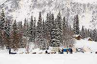 Jerry Sousas sled dog team arriving @ Finger Lake Chkpt 2006 Iditarod Finger Lake Alaska Winter