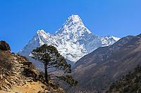 Day 005 Everest Base Camp Trek